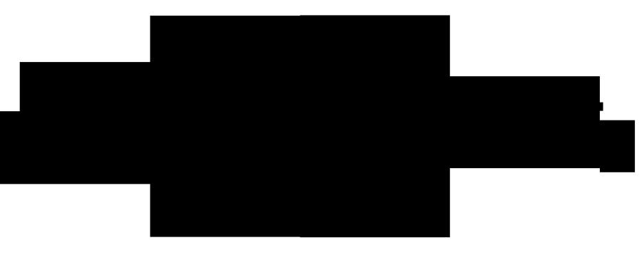 Blanca Beltz logo